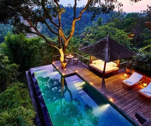 bali, forest, and hotel image