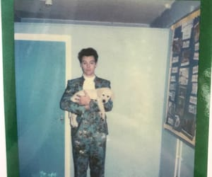 polaroid, Harry Styles, and puppy image