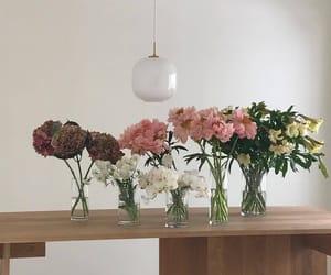 flowers, minimalist, and pink image