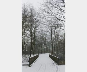 cold, snow, and cool image