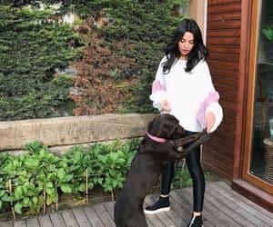 actress, dog, and garden image