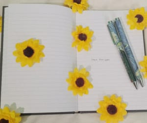 artsy, books, and flower image