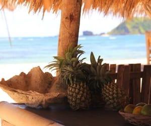 beach, pinapple, and pia pole image