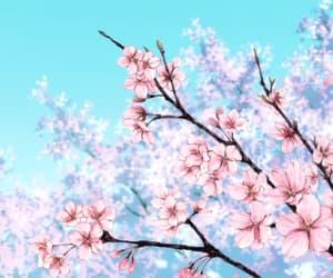 anime, gif, and sakura image