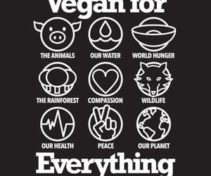 vegan, animal, and veganism image
