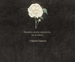 amigos, arte, and flores image