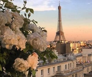 amour, Fleurs, and france image