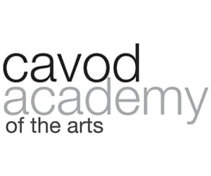 dance academy, check out this website, and cavod academy image