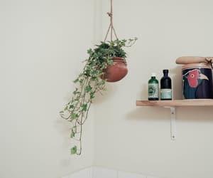 furniture, home, and interior design image