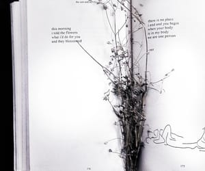 books, flowers, and we heart it image