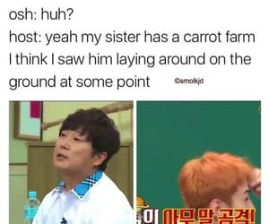 carrot, exo, and kpop image