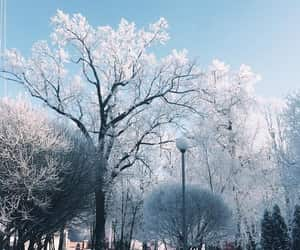 aesthetic, europe, and frozen image