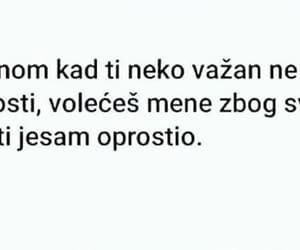 balkan, bosna, and volim te image