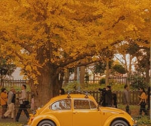 car, yellow, and tree image