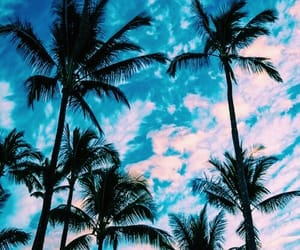 summer, nature, and sky image