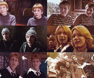 fred and george, harry potter, and weasley twins image