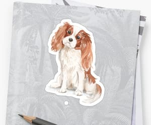 dog, sticker, and cavalier king charles spaniel image
