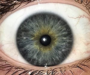 blue, eye color, and eyes image