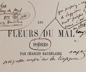 Charles Baudelaire, poetry, and flowers of evil image