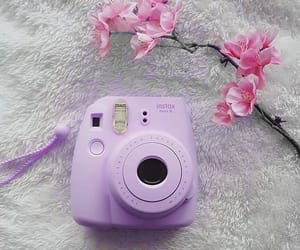 camera, lilac, and polaroid image