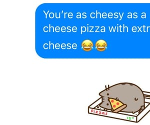 cat, cheese, and cheesy image