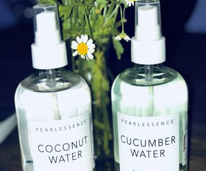beauty, coconut, and cucumber image