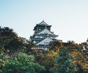 asian, japan, and osaka castle image