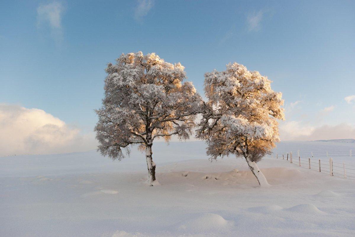 blue, cold, and landscape image