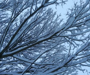 beautiful, cold, and blue image