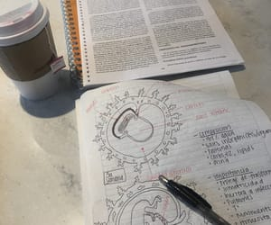 books, coffee, and notebook image