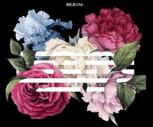 bigbang, flowers, and daesung image
