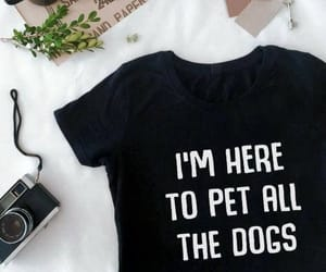 etsy, funny, and pet image