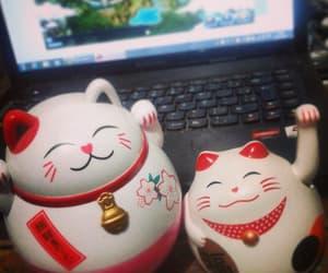 cat cute image