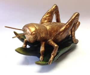 cricket, golden, and etsy image