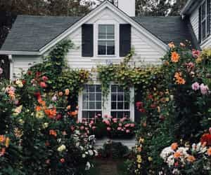 flowers, cottage, and house image