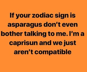 astrology and funny image