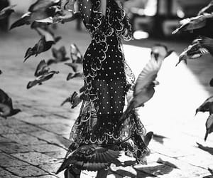birds, street style, and style image