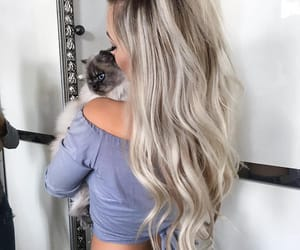blonde, chic, and longhair image