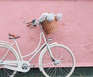 pink, flowers, and bike image