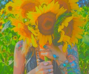 girasol, vibrant color, and yellow image