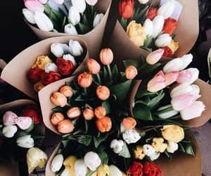 flowers, goals, and tumblr image