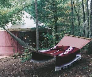 forest, sleep, and travel image