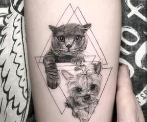 black&white, cat, and dog image