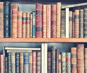 books, bookshelves, and passion image
