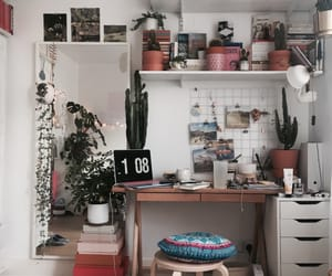 plants, room, and study image