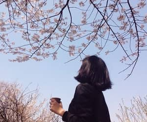 aesthetic, ulzzang, and flowers image