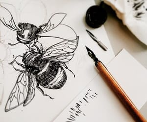 art, drawing, and bee image