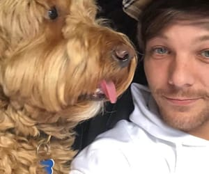 dog, miss you, and tommo image