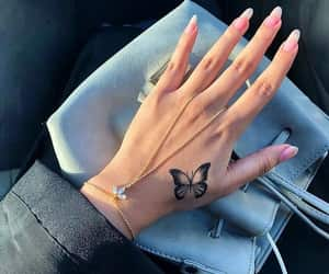 butterfly, gorgeous, and hand image
