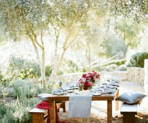 brunch, summer, and picknick image